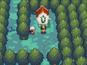 Screenshot aus Pokémon Heart Gold & Soul Silver